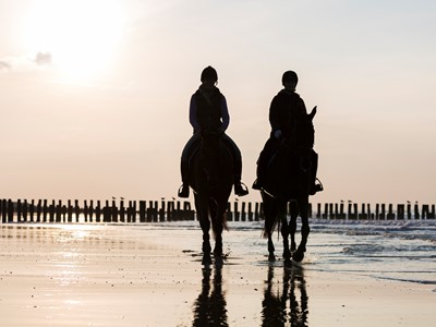 Domburg Holiday Resort Stables